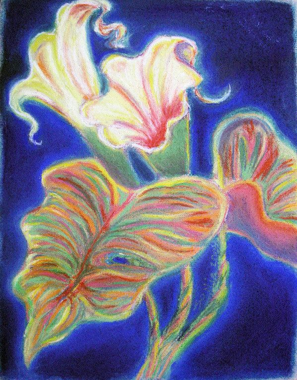 """Canna Lily"" pastels on paper, 9""x12"", 2007"