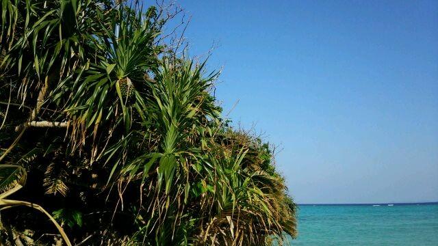 これぞ沖縄の海の原風景