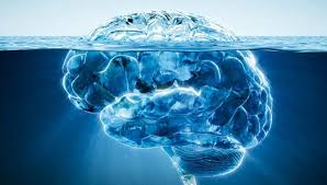 psychanalyse et neuroscience, connaître l'inconscient