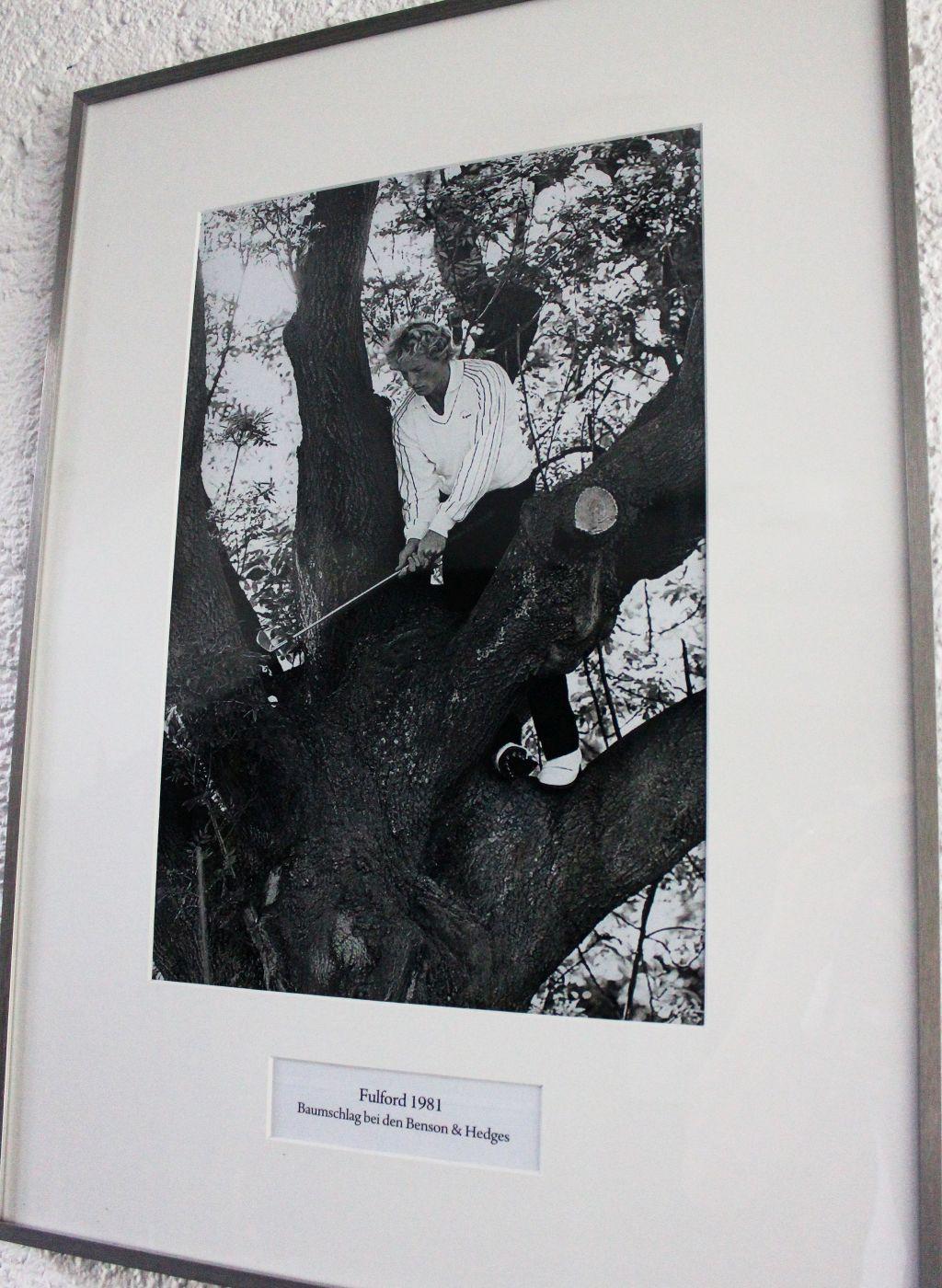Oder von Langers spektakulärem Schlag aus dem Baum (c) Stephan Schöttl
