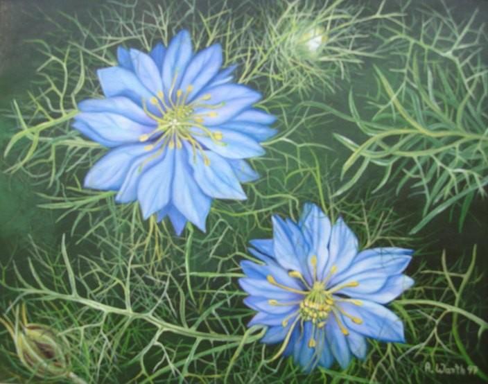 Jungfer im Grünen    1997    50 x 40 cm