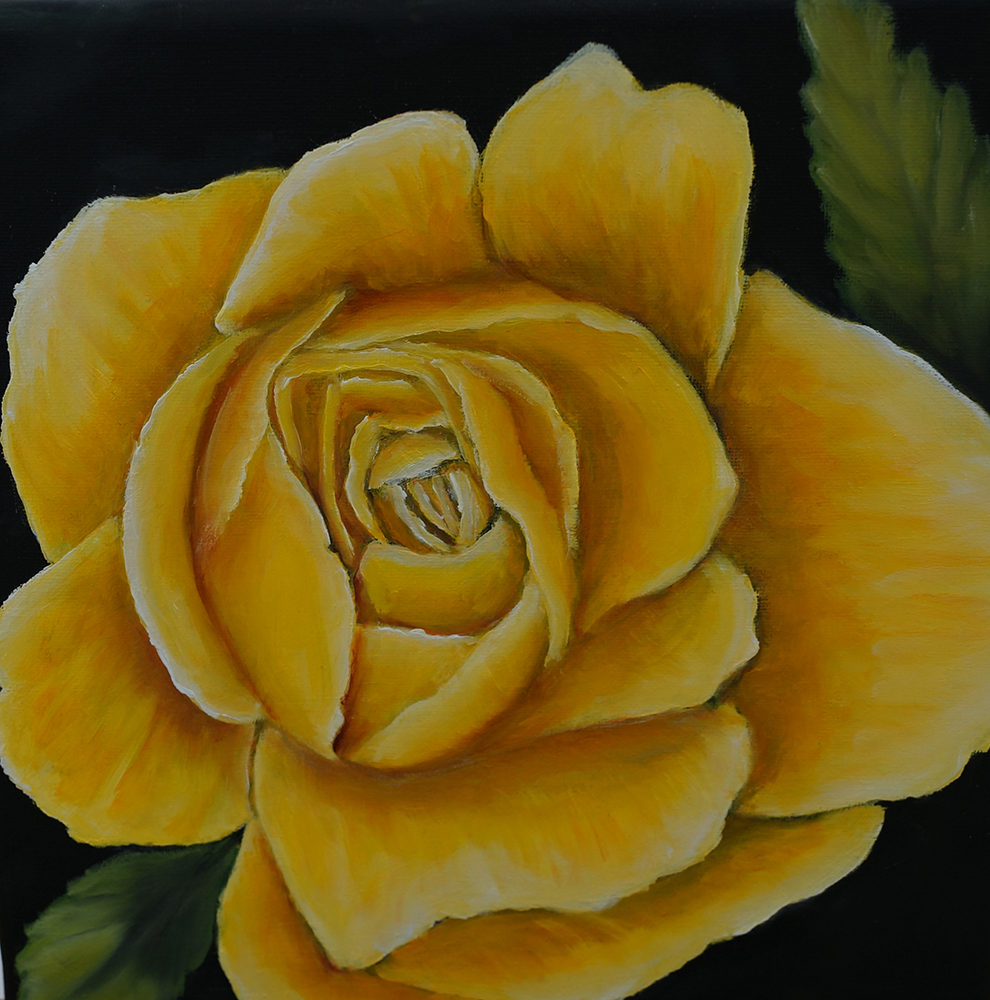 2020 Rose gelb 20 x 20 cm, Öl