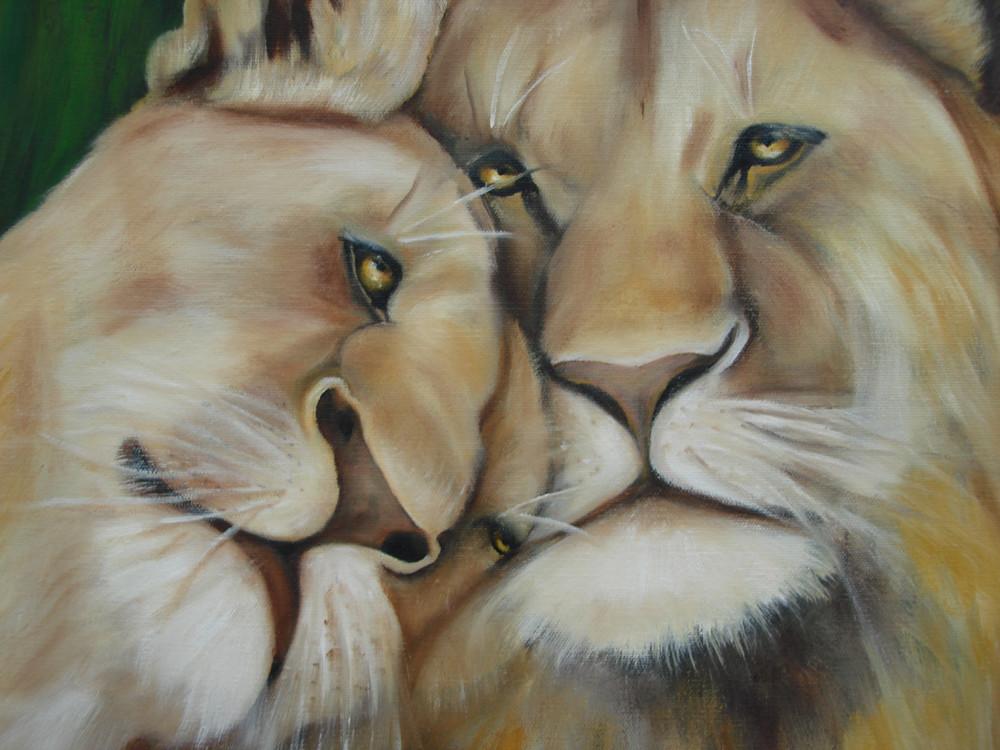 Löwen   2010   50 x 50 cm    Öl