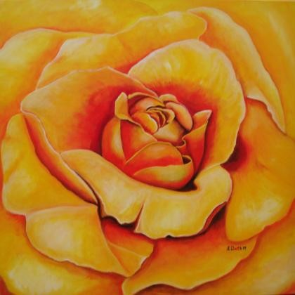 Rose  70 x 70 cm