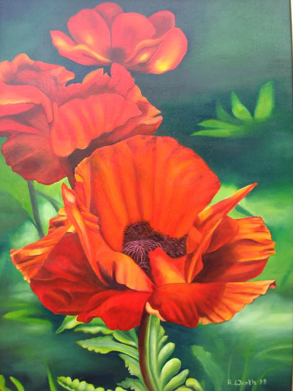 Mohn    1997     50 x 70 cm