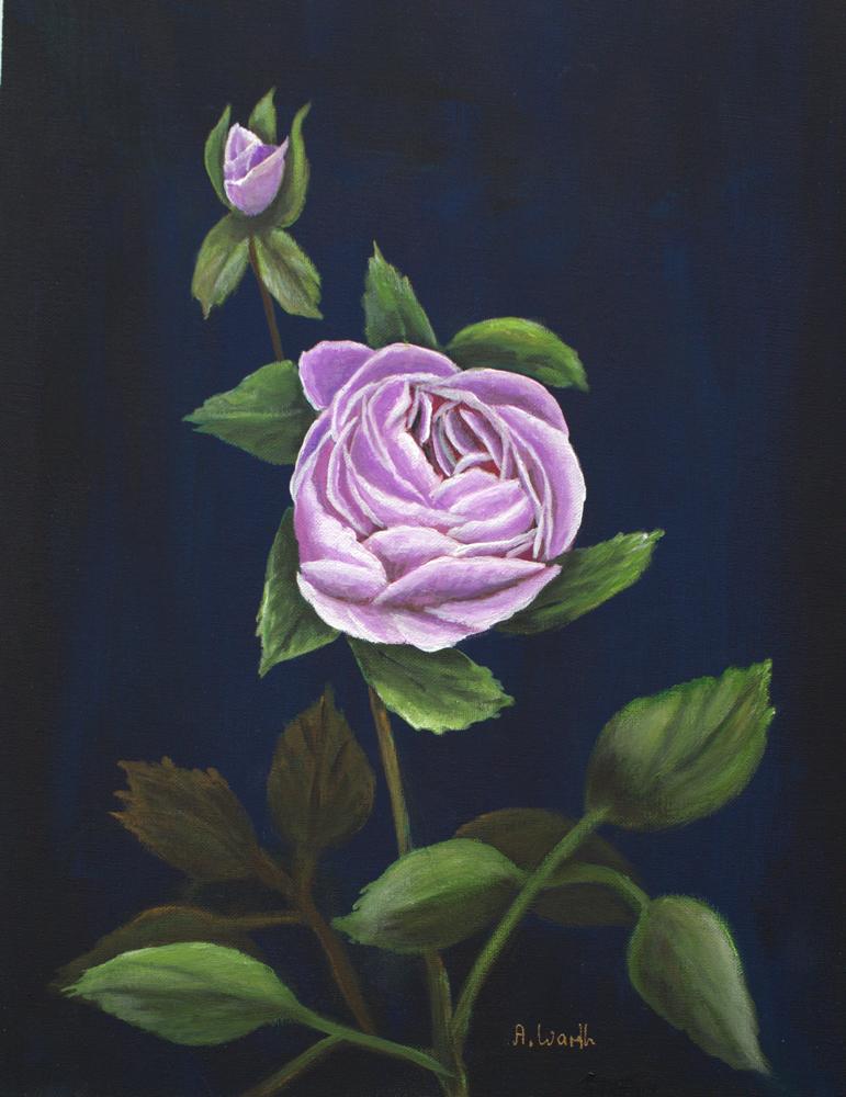 Rose fliederfarben 2018 Acryl auf Malkarton 30 x 39 cm