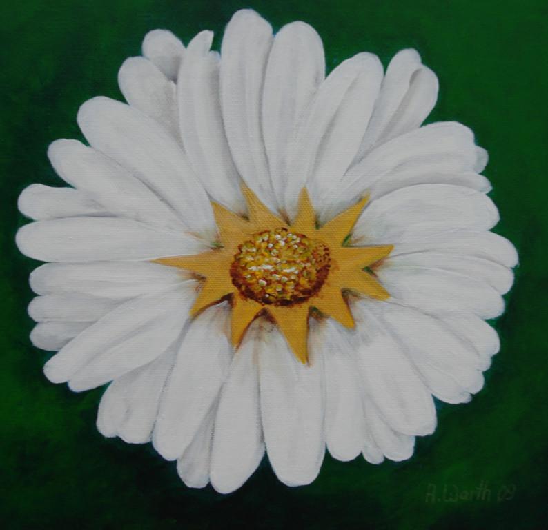 Margarite  2009     30 x 30 cm