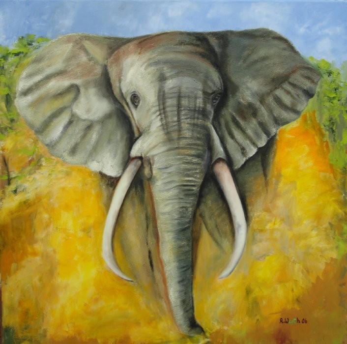 Elefant  2006   Öl  gespachtelt  80 x 80 cm