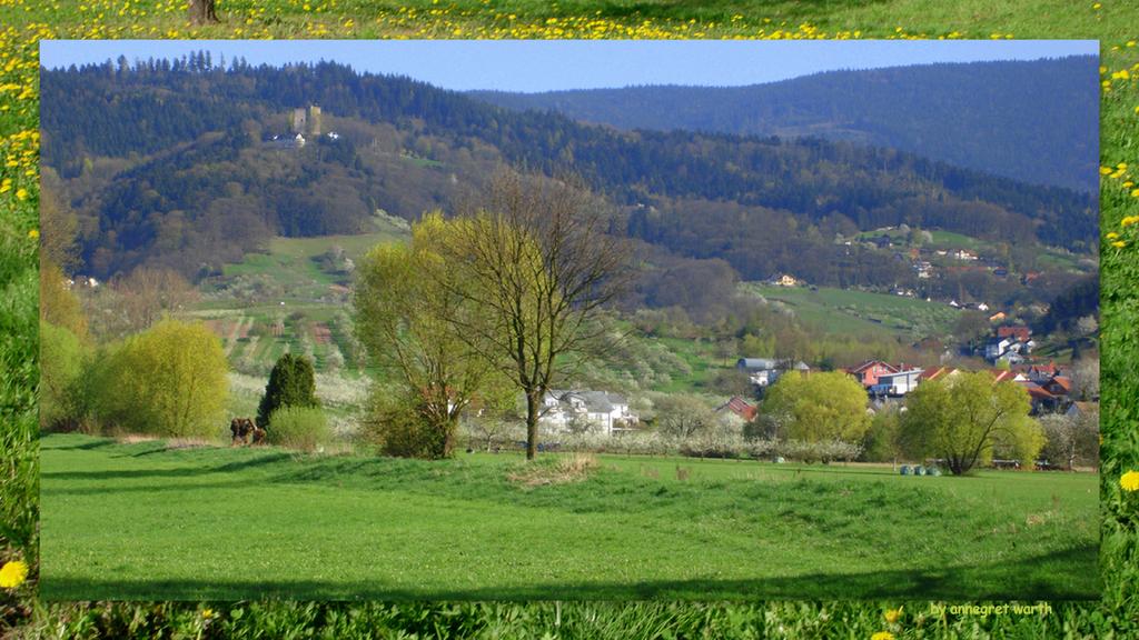 Blick auf Burg Windeck