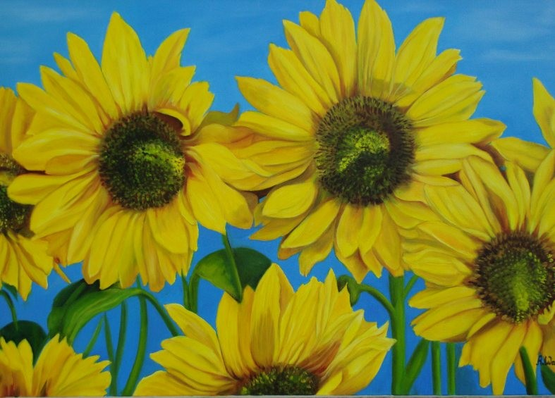 Sonnenblumen       2003      60 x 40 cm