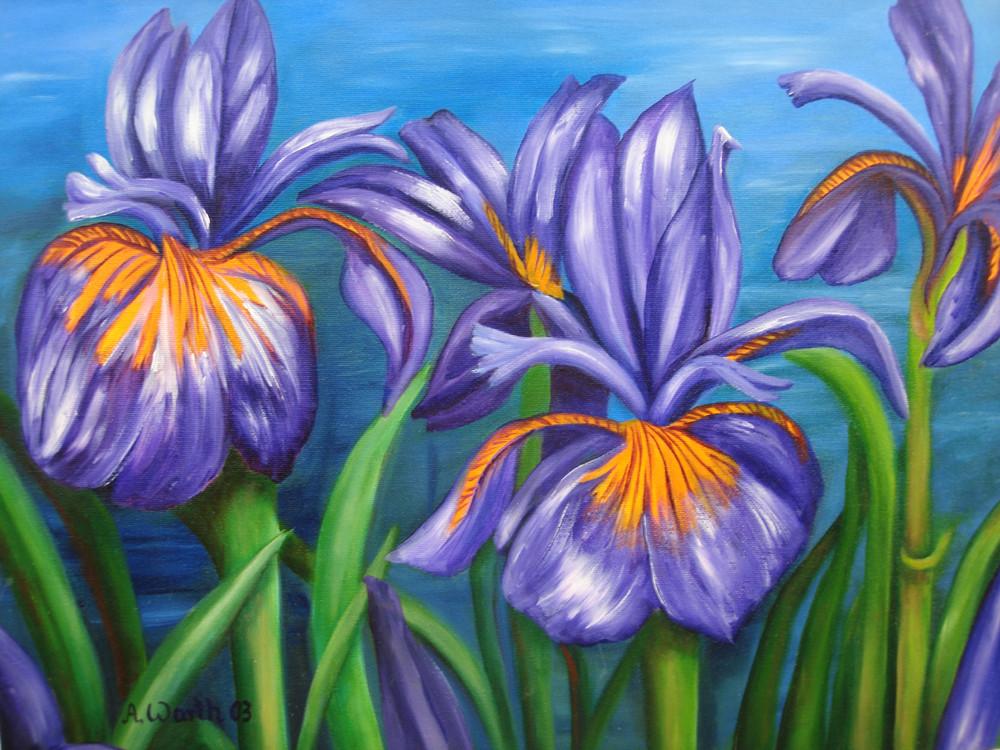 Iris   2003      60 x 40 cm