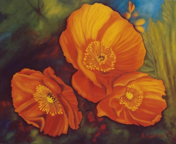 Mohn    2003     60 x 50 cm