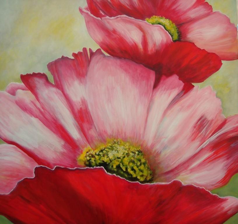 Cosmea    2010    70 x 70 cm