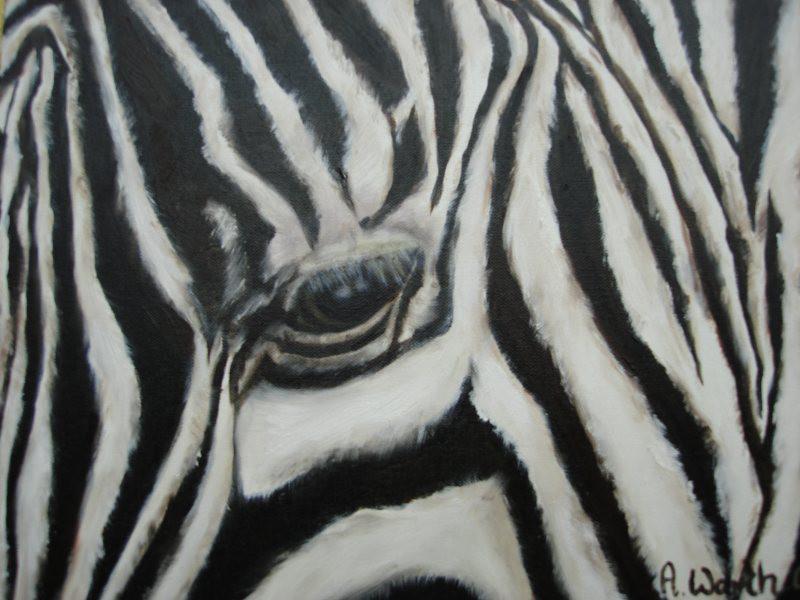 Zebra  2003   Öl  24 x 30 m