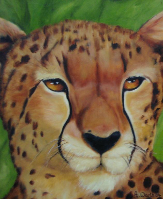 Gepard   2004     24 x 30 cm  Öl