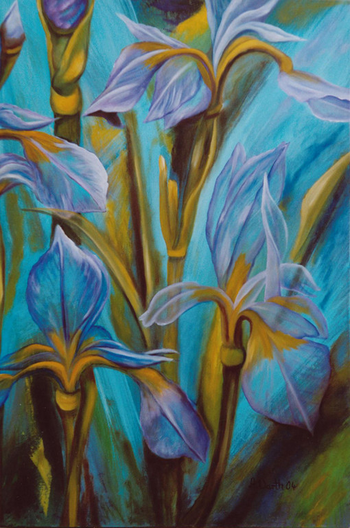 Iris   2004      50 x 70 cm