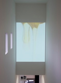 inatallation view of 'honey' IF of Gallery Psys