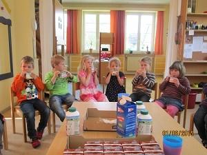 Kindergarten WindbergenLachmöwen
