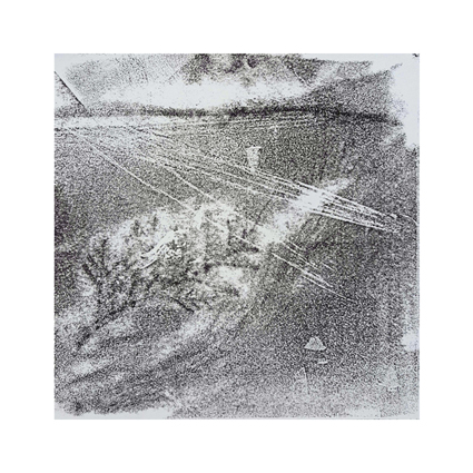 """""""Pflanzen Abstract I""""  Unikat auf 15 cm x 15 cm  naturweißem Papier"""