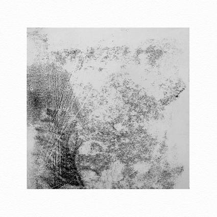 """""""Pflanzen Abstract II""""  Unikat auf 15 cm x 15 cm  naturweißem Papier"""
