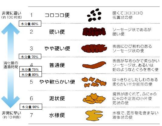 大腸がん - JapaneseClass.jp
