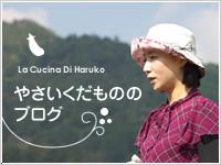 山口晴子のやさいくだものブログ