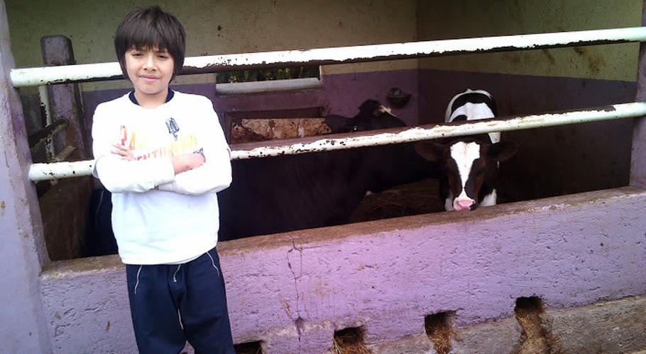 """Presidenta de la Asociación del Rancho Ecológico """"El Arco"""" Maria Teresa Brambila"""
