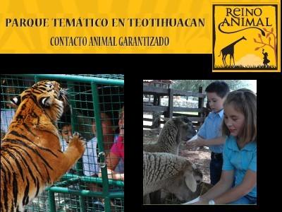 Gerente de Relaciones Públicas de Reino Animal. Inés Patricia Roldán