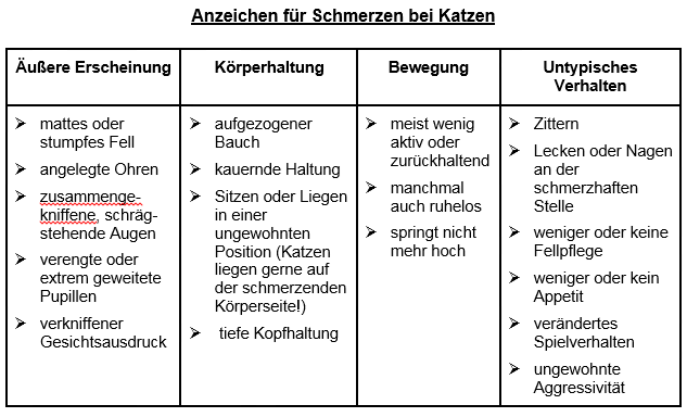 Quelle: Initiative Tiermedizinische Schmerztherapie, Copyright Tabelle: Dr. Svenja Joswig