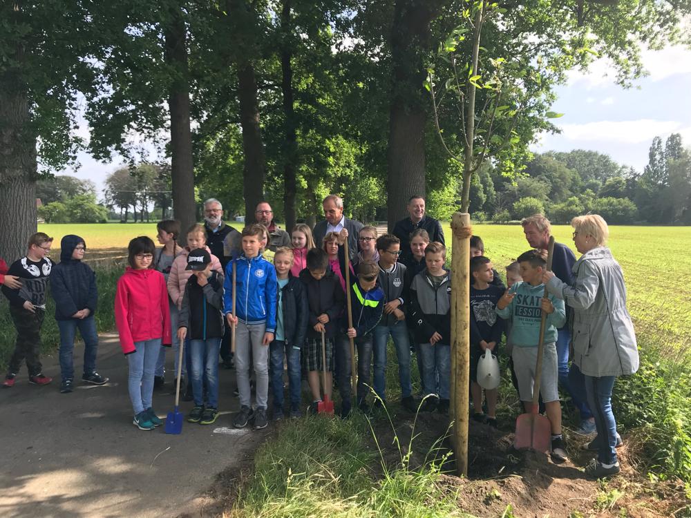 Die vierte Klasse hat eine Patenschaft für die neuen Bäume an der Rodehorster Allee übernommen