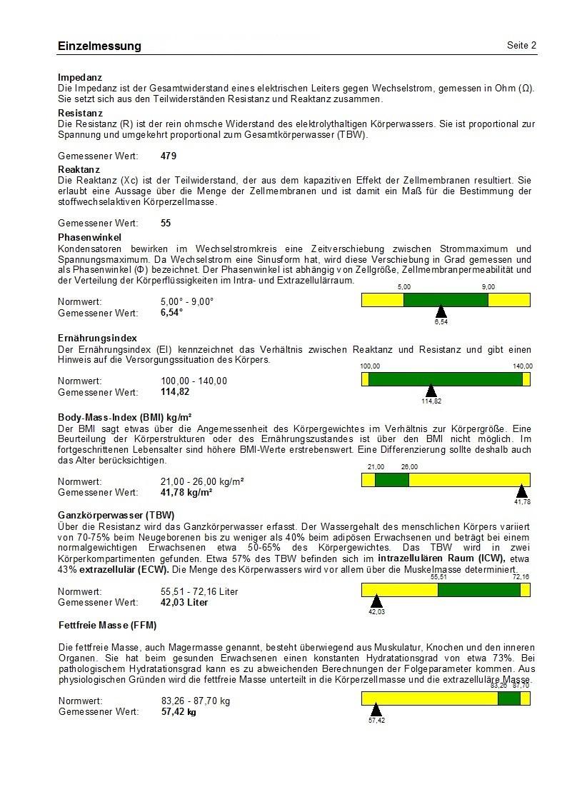 Einzelgesamtwertung mit ausführlichen Erklärungen Seite 2