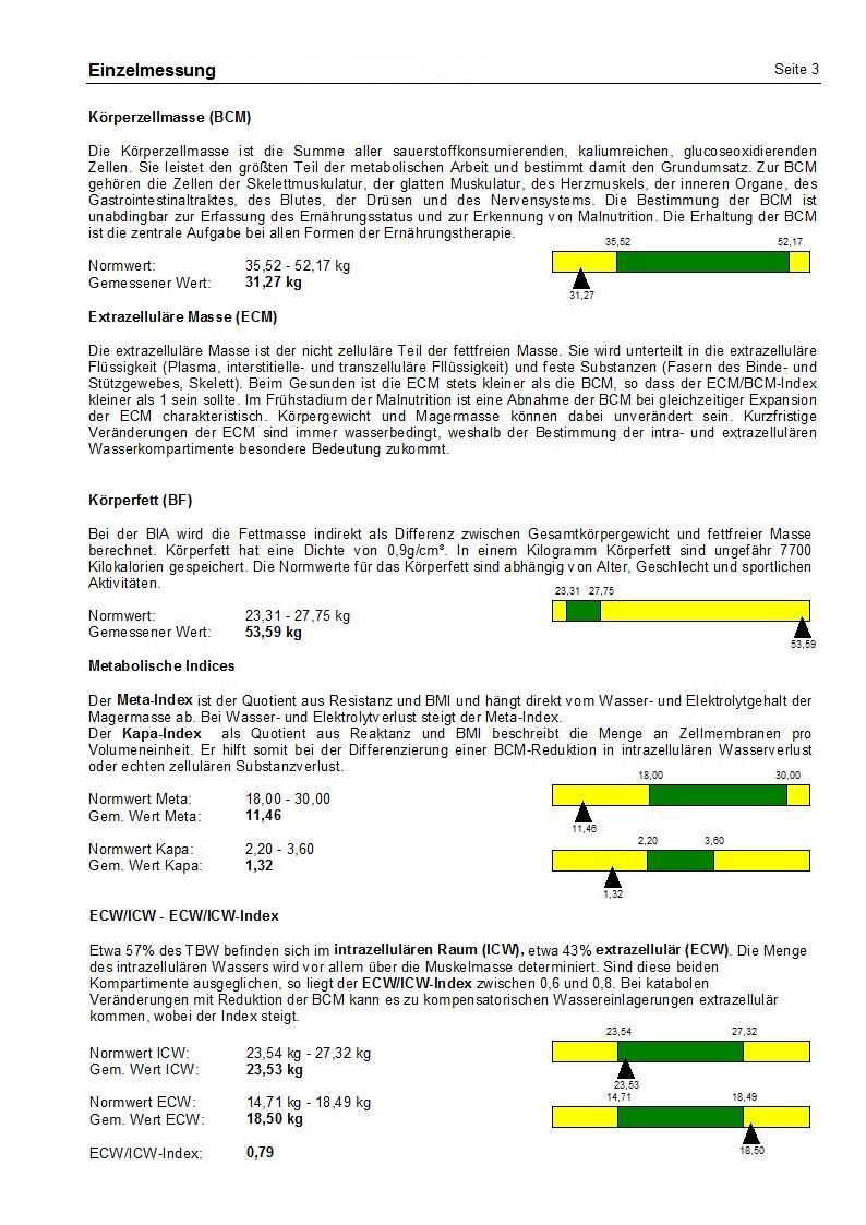 Einzelgesamtwertung mit ausführlichen Erklärungen Seite 3