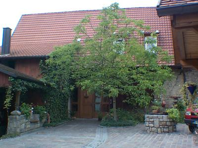 Innenhof Weingut A. Keller