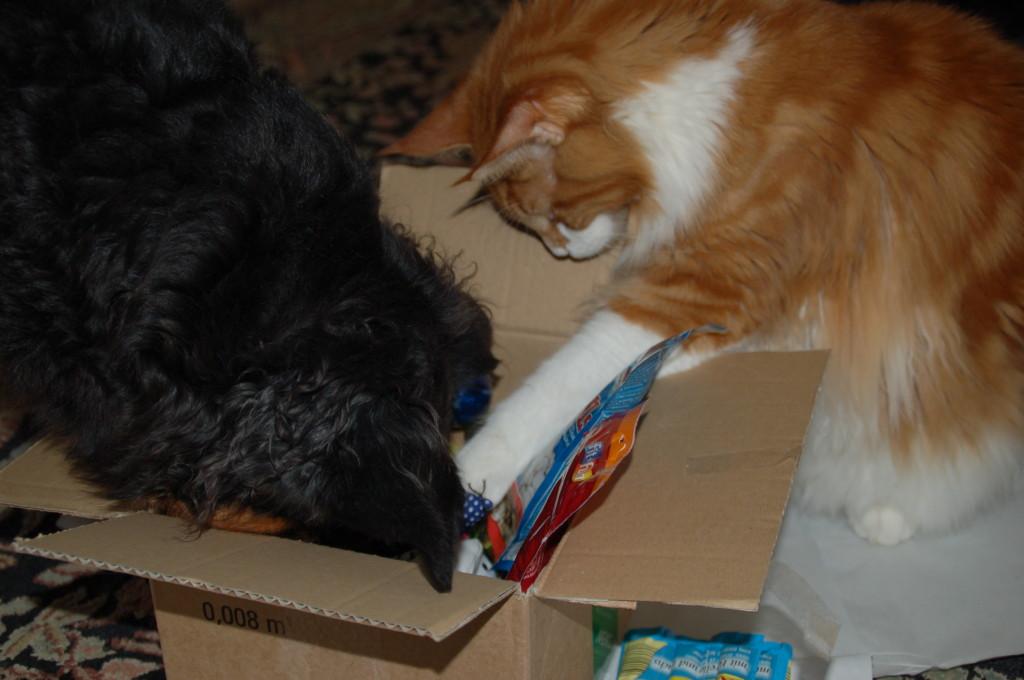 Hey Luna, das sind unsere Geschenke