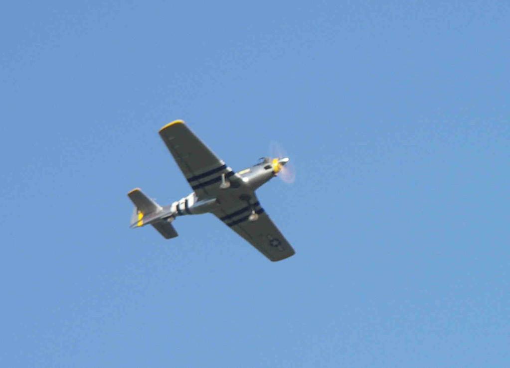 Le P51 en vol