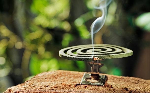 Eine Räucherspirale als Mückenschutz.
