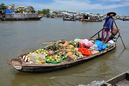 Vietnamesischer Einfluss