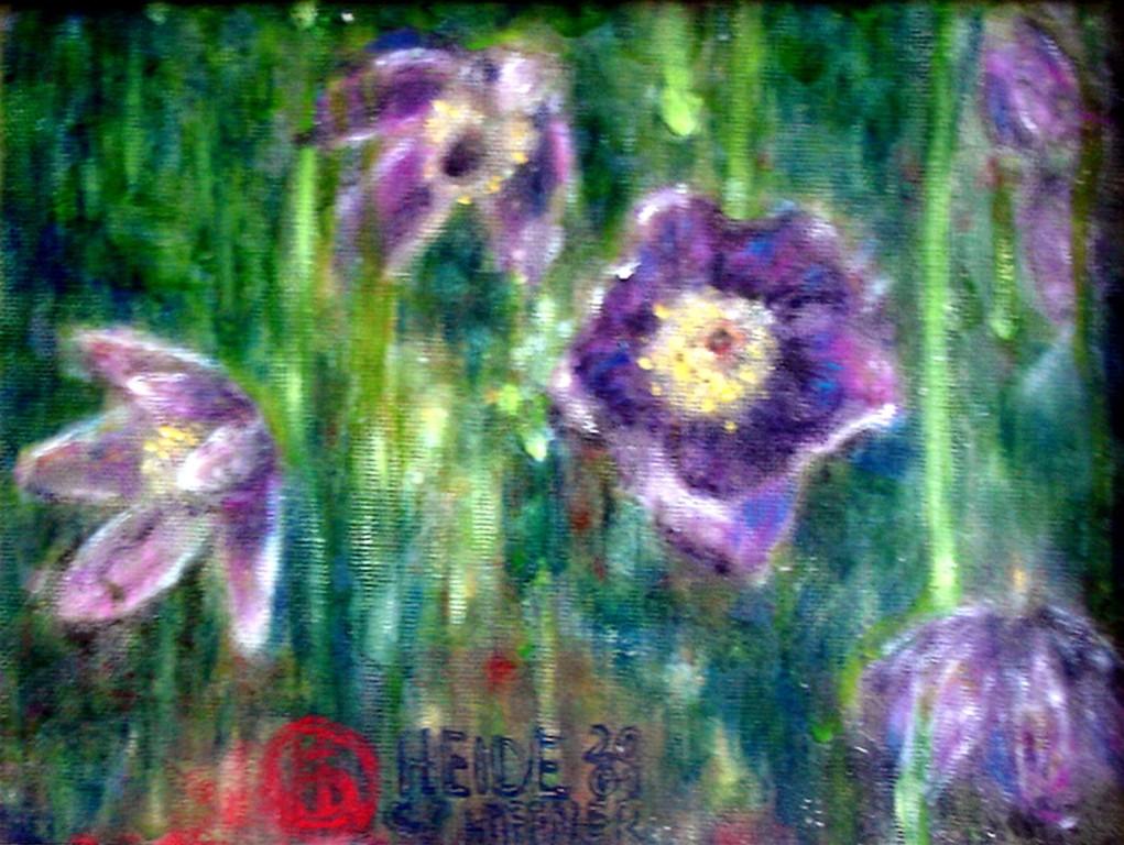 Küchenschelle Öl 18x24 2001
