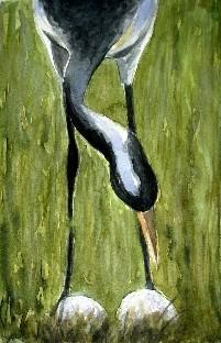 Kranich mit Eiern Aquarell 19x25 2007
