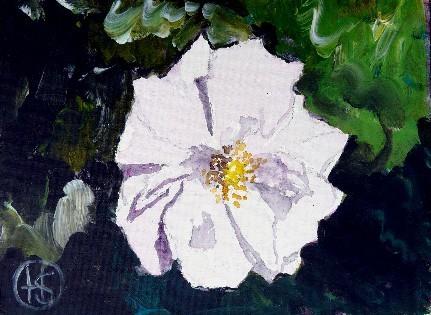 Wildrose Acryl 18x24 2008