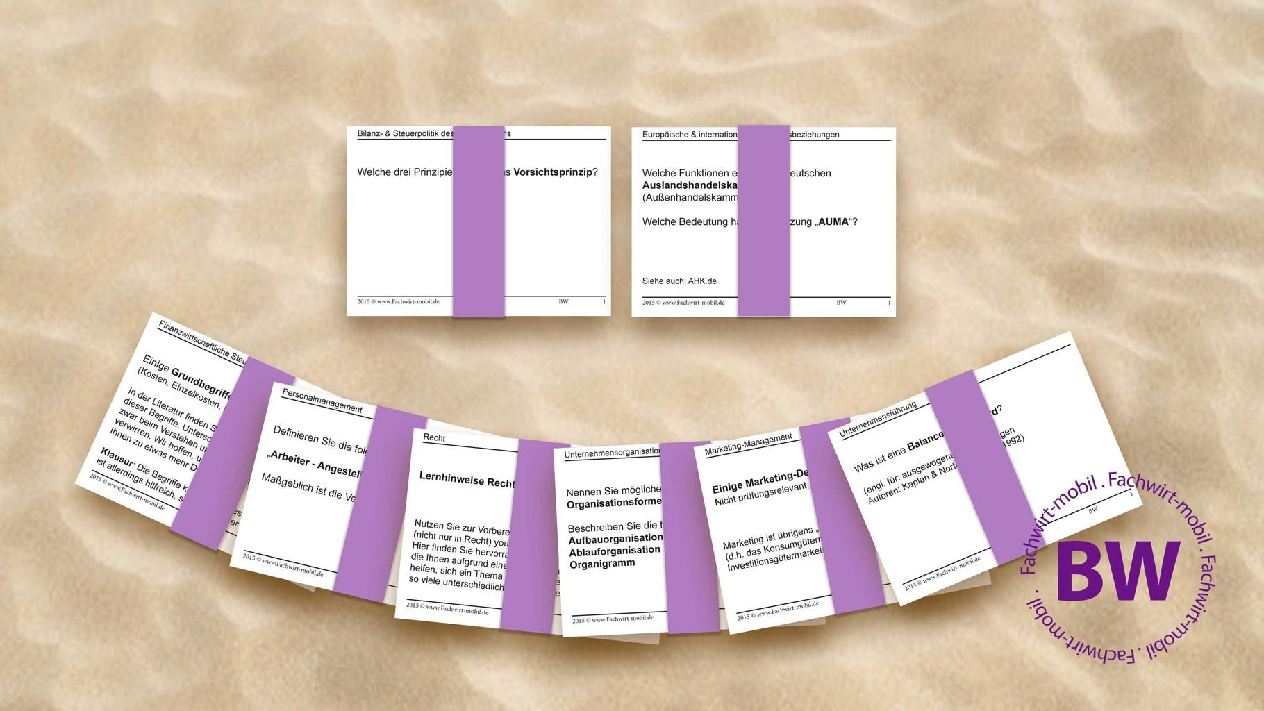 Geprüfter Betriebswirt - gedruckte Lernkarten (inkl. Digital-Version)