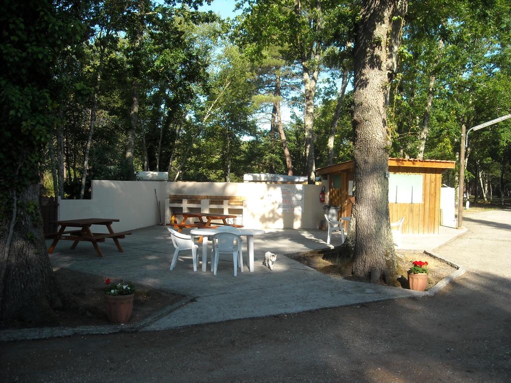 Convivialité autour des barbecues et des tables de la terrasse