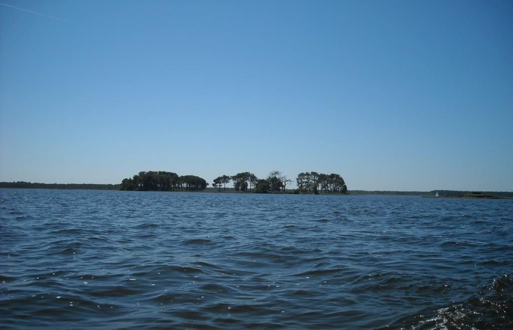 Ile sur le lac de Lacanau