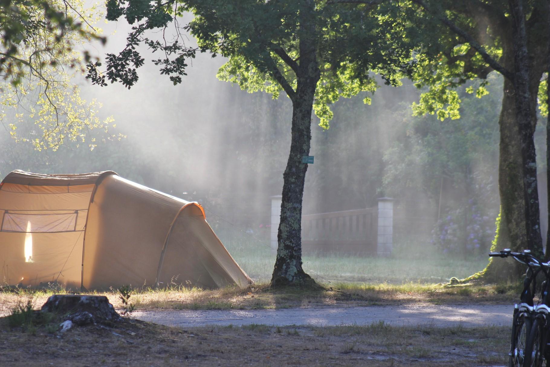 Petit matin dans la brume - Crédit photo Philippe Girard