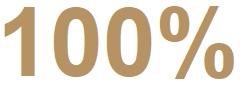100 Procent by WILD DESIGN
