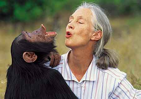 Jane GOODALL : Primatologue, Ethologue et Anthropologue britannique