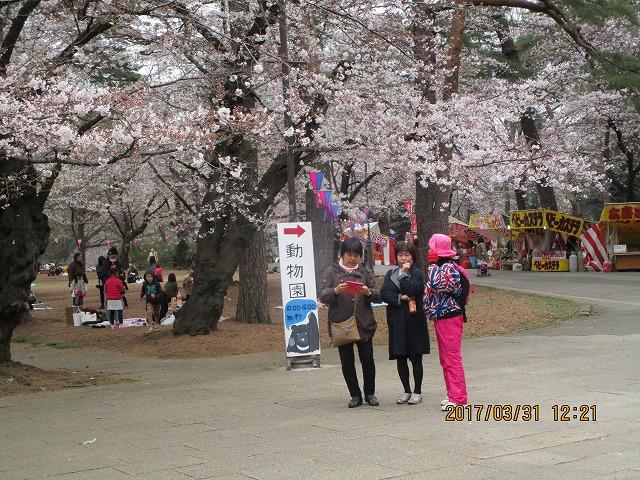 満開の桜に見劣りしない三人