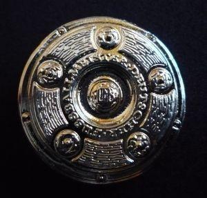 Die Schale hat in ihrer jetzigen Fassung einen Durchmesser von 59 cm und wiegt ca. 11 kg. Sie ist mit 50.000 Euro versichert. Auf den beiden äußeren Ringen sind alle deutschen Meister seit 1903 eingraviert. Die Meisterschale wurde 1949 angefertigt und ers