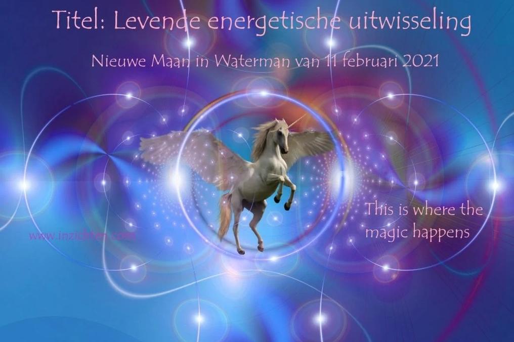 Levende energetische uitwisseling: Nieuwe Maan in Waterman 11 februari 2021 ♥ Manuela van der Knaap ♥ Lichtwerkers Nederland
