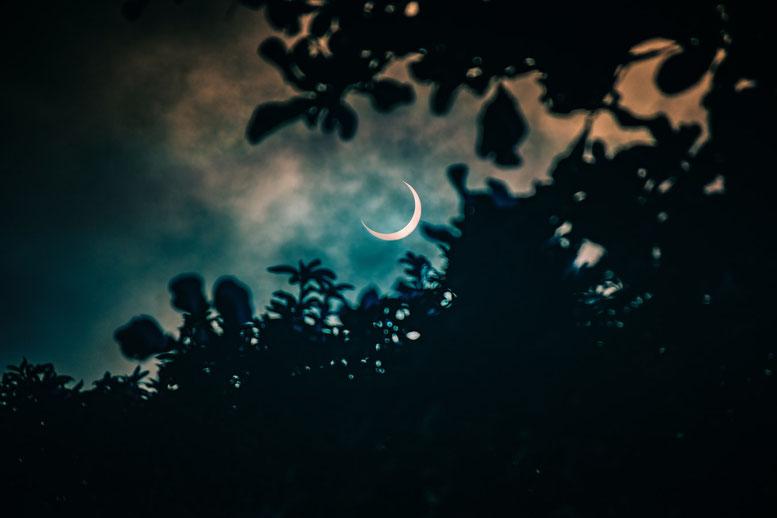 Nieuwe maan 10 juli 2021 ♥ Petra Stam ♥ Lichtwerkers Nederland